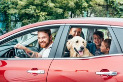 beautiful young family travelling by car with dog