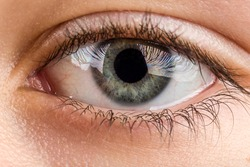 Beautiful young teenager health brown eye macro