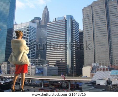 beautiful new york city pictures. city view, New York