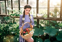 Beautiful young woman in a blue pea dress with basket of vegetables, working harvesting tomatoes in the greenhouse
