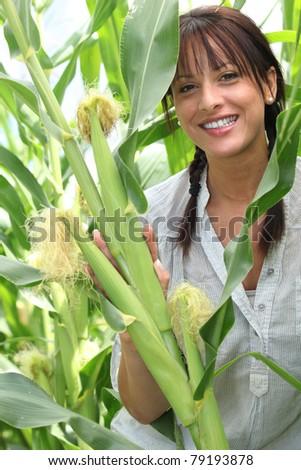 Beautiful young woman in a sweetcorn field