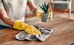 Beautiful young woman makes cleaning the house. Girl rubs dust. Woman in protective gloves is smiling and wiping dust using a duster while cleaning her house.