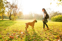 Beautiful young woman playing with her Dog in the Park in the autumn.