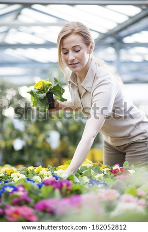 Beautiful young woman selecting flowers to plant in his garden