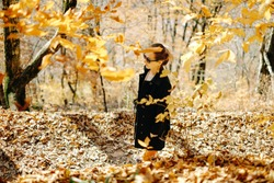 Beautiful young woman walking in autumn park on fallen leaves.