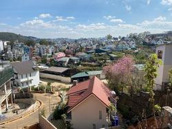 Beautifull nature in dalat city vietnam