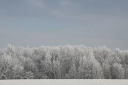 Beautifully Frigid Winter in Wisconsin