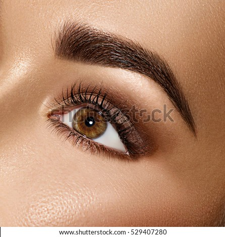 Beauty Brunette Woman Eye with Perfect Makeup. Beautiful Professional Make-up. Perfect eyebrows, eyes and eyelashes. Skin care, foundation, contouring. Beauty Girl's Face make up.