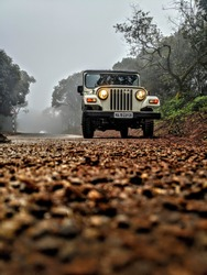 Beauty of a Jeep captured in the centre of beautiful nature.