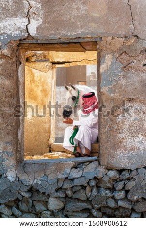 Beauty of Arabian horses in its nature land at QATAR at ruins of old heritage village