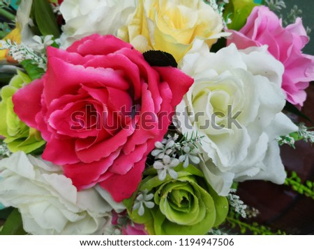 Beauty of the Colorful flowers around you #1194947506