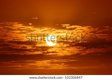 Beauty of the Sun #102306847