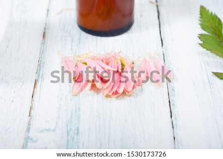 beauty product samples, cosmetic cream, bath salt, liquid soap and pink flower, white wood table