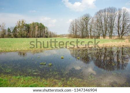 Beauty spring flooded meadow, forest to the horizon, clouds and trees reflecting in the water #1347346904