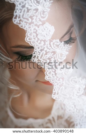 Beauty/ Wedding. Beautiful Bride close-up portrait, face hidden veil. wedding makeup, wedding hairstyle, soft selective focus. gorgeous young bride at home. series. #403890148