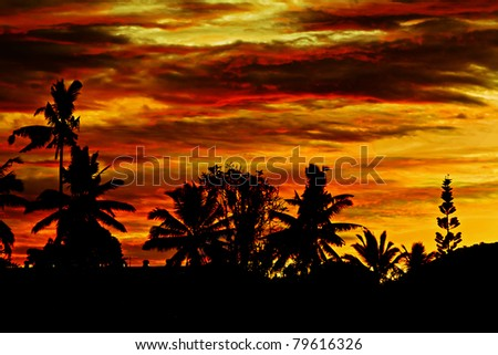 Beautyful orange sunset in Ubud, Bali island
