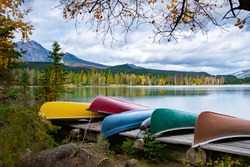 Beauvert lake at Jasper, Canada, Canadian lake popular for canoe. in the Canadian Rockies Jasper national park