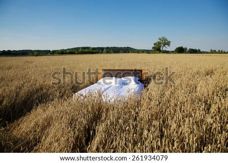 bed in a grain field- concept of good sleep