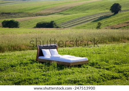 Bed in a grass field- concept of good sleep