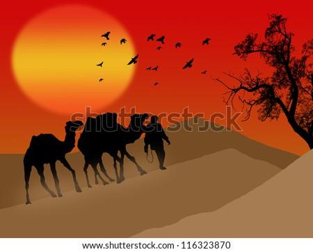 Bedouin camel caravan in african desert background illustration ...