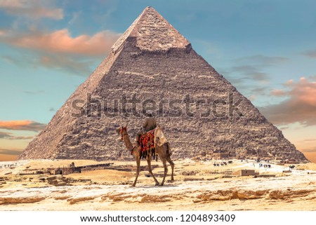 Bedouin on camel near Pyramid of Khafre or of Chephren in Giza, Egypt #1204893409