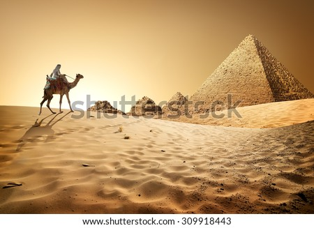 Bedouin on camel near pyramids in desert #309918443