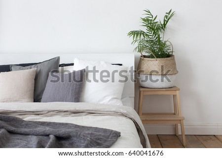 Bedroom interior bed and bedside table with plant #640041676