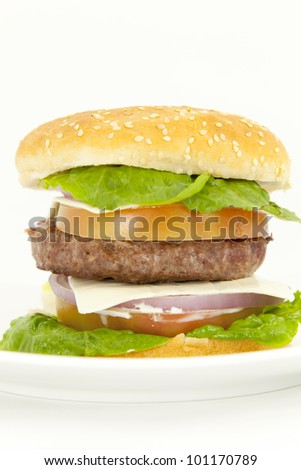 Beef burger with lettuce tomato onion and cheese