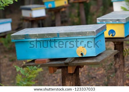 Beehive im rural environment. Late autumn shot.