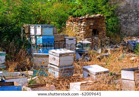 Beehives being stored in a field