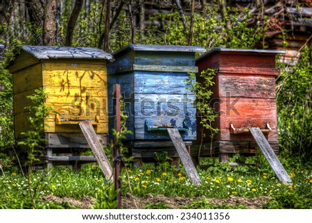 Beehives in the Village of Vlkolinec, Slovakia
