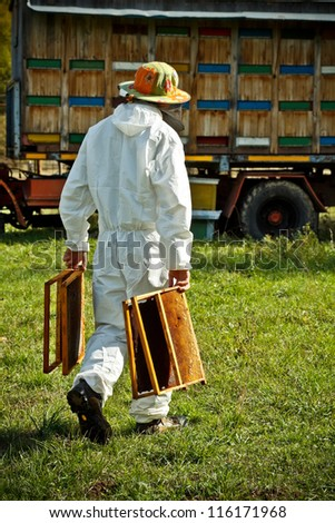 Beekeeper at work in his apiary