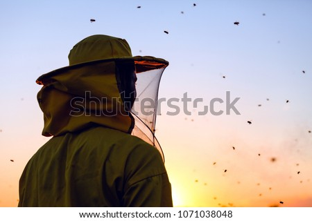 Beekeeper in the sunset surrounded with bees swarming around him