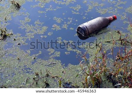 Beer bottle in a lake.