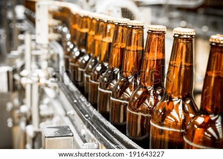 Beer bottles on the conveyor belt Сток-фото ©