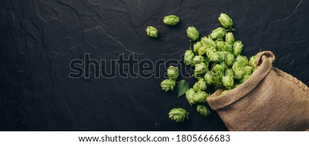 Beer brewing ingredients, hops, scattered out of a fallen sack. Beer brewery concept. Oktoberfest background. ストックフォト ©