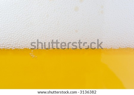 beer bubbles. glass of beer - close up shot.