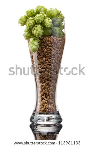 Beer glass with barley and hop