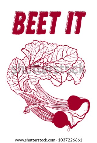 Beet it. Hand drawn colorful illustration of baby Beets, Beet, Beetroots With Leaves. For t-shirt, poster, print, postcard.