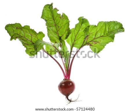 Beet root isolated on white background