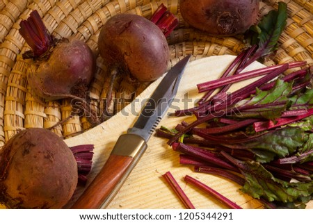 Beetroot fresh from the vegetable patch. The beetroot, is also known in North America as the table beet, garden beet, or simply as beet. (Beta vulgaris).