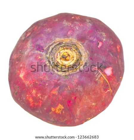 Beetroot vegetable aka the table beet, garden beet, red beet - isolated over white background