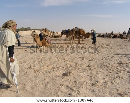Before camel ride