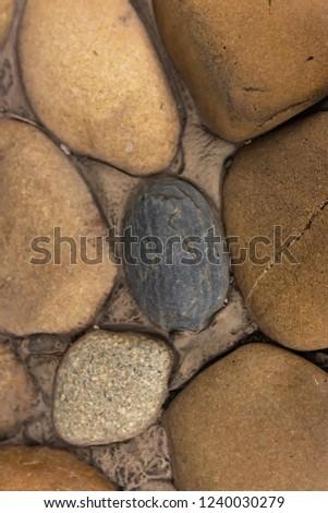 beige dark special single stone gray gravel base natural #1240030279
