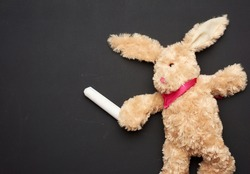beige plush rabbit toy with long ears and white chalk in a paw on a black chalk board, copy space
