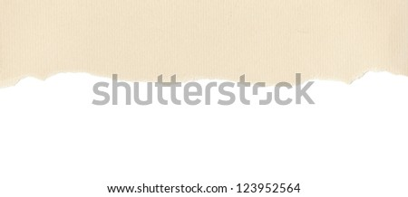 Beige textured paper with torn edge on white background