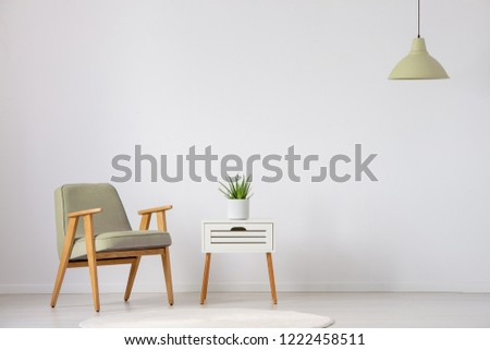 Beige wooden armchair next to cabinet with plant in flat interior with lamp and copy space. Real photo #1222458511