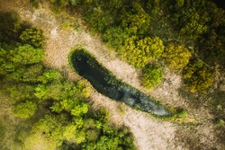 Belarus. Aerial View Of Dry Grass And Small Bog Marsh Swamp Wetland Landscape In Spring Day. High Attitude View. Marsh Bog. Drone View. Bird's Eye View.