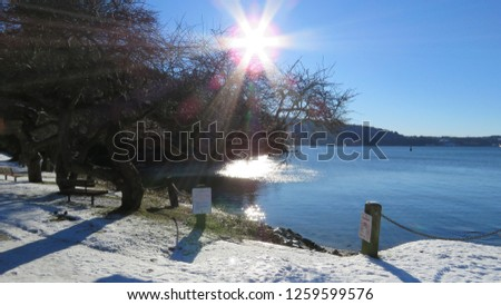 Belcarra regional park near Vancouver British Columbia Canada - 063