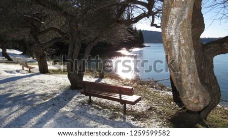 Belcarra regional park near Vancouver British Columbia Canada - 068